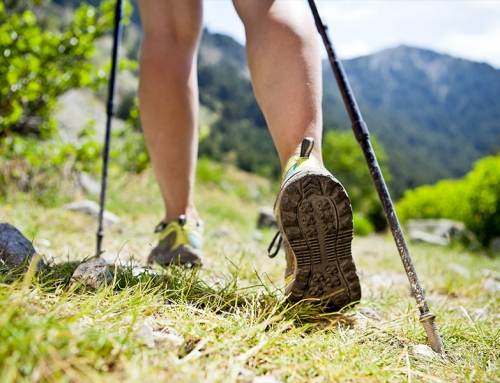 Nordic Walking: immergiti nella  natura!