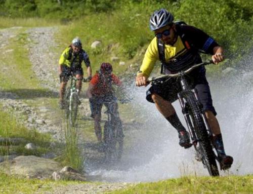 Mountain Bike: Vivi la tua passione al massimo
