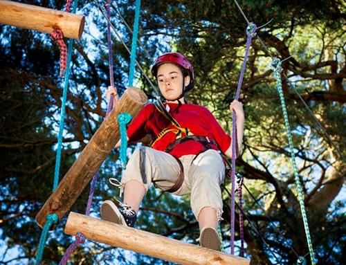 Il Parco avventura… immerso nei  boschi…