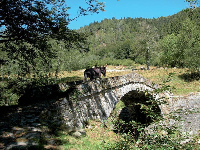 Oasi Zegna - Rifugio Piana del Ponte