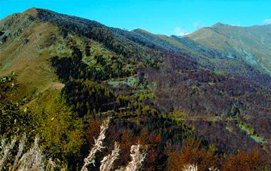 oasi zegna - vacanza in montagna